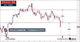 欧元兑日元跌破支撑,或跌至116.35/70