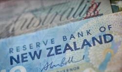 新西兰联储凌晨议息,数据显示可以现价进场